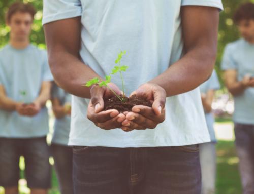 Ações praticadas no dia a dia impactam diretamente o meio ambiente